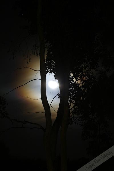 Moon Take 1