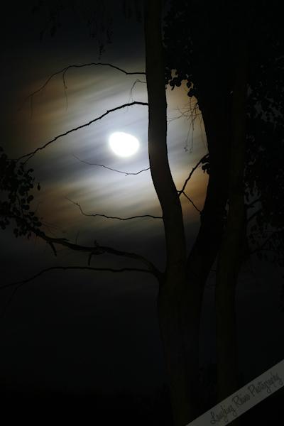 Moon Take 2
