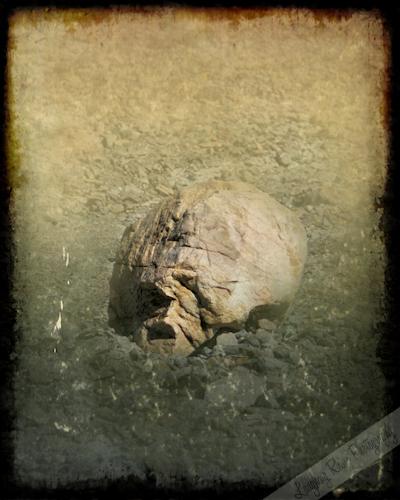 Skull Rock in Mosaic Canyon