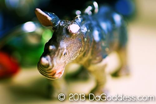 the one-earred rhino
